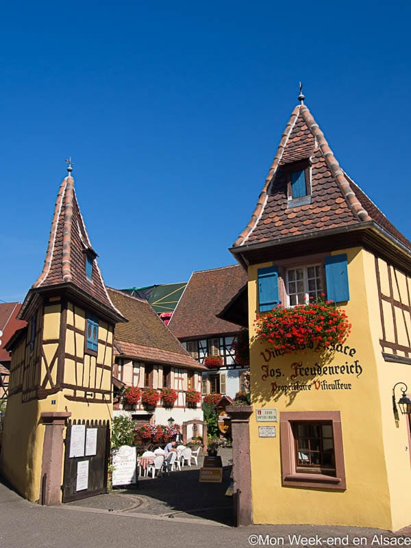 wine-maker-eguisheim