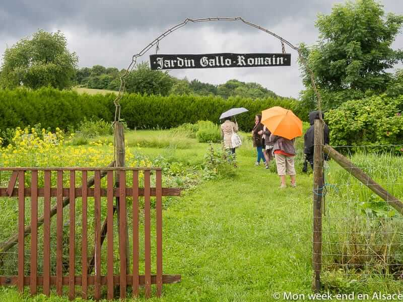 jardin-gallo-romain-cip-la-villa