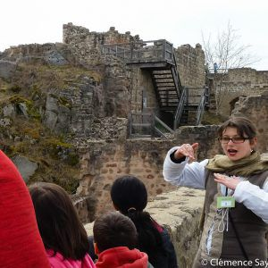 visite-guidee-chateau-hohlandsbourg-alsace
