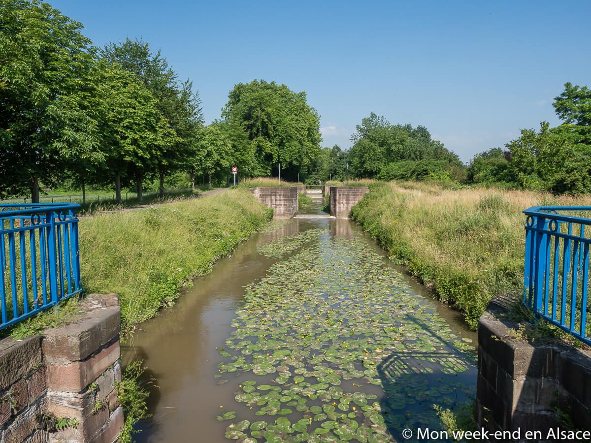 alsace-canal-bruche