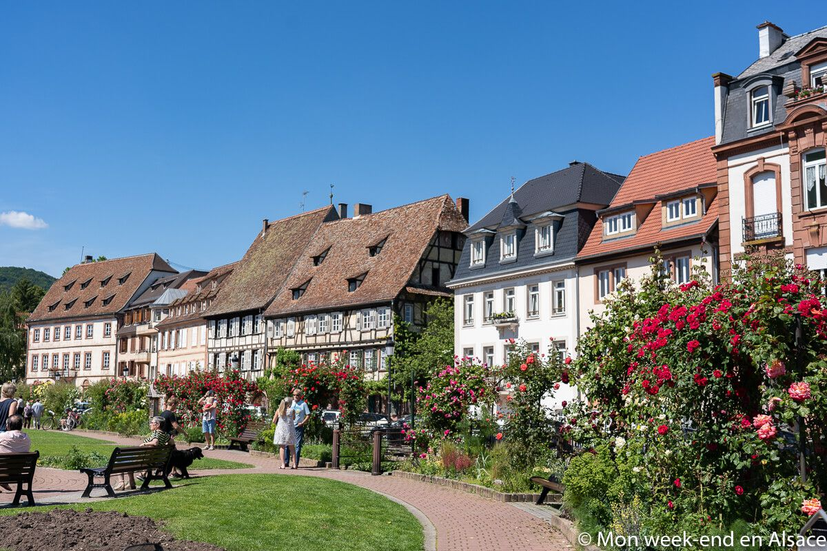 visite-wissembourg-alsace