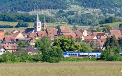 Alsace sans voiture – 20 idées de visites et activités